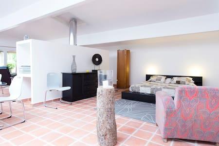 LOFT style lodgings  - Loubens-Lauragais - Çatı Katı