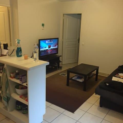 Petit T2 proche de genéve - Gex - Apartment