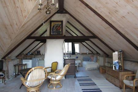 Big airy loft & grand piano in old farmhouse - Ardre
