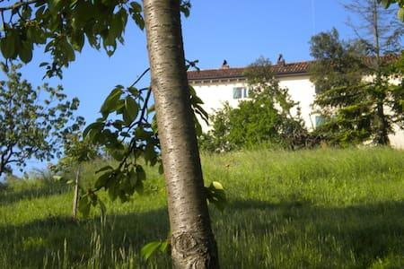 Casa contadina nel Monferrato - Cuccaro Monferrato - Dom
