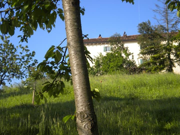 Casa contadina nel Monferrato