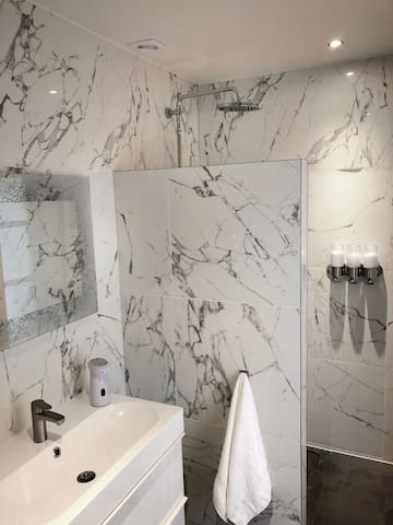 Bathroom with Rainshower