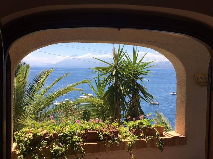 A window on the Mediterranean Sea