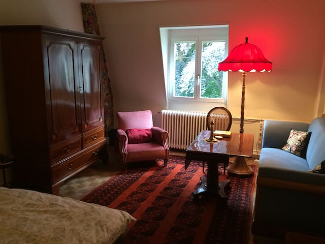 charming accomodation centrally located in Basle