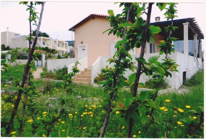 Entire house in the  Aegina island! - Agia Marina - Casa