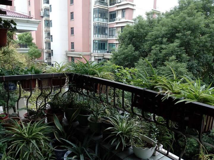 上海市中心近中山公园,您有一个舒适的家
