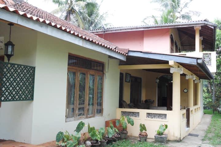 Kandy Hillok garden