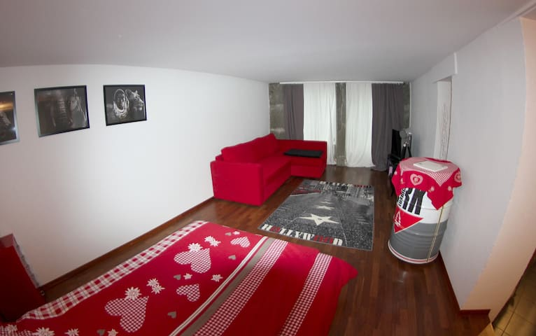 spacious room in the heart of bern - Berne - Apartament