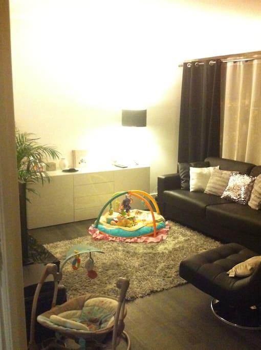 Le salon avec TV (Cable, chaines sports, accès à internet) - Canapé lit convertible