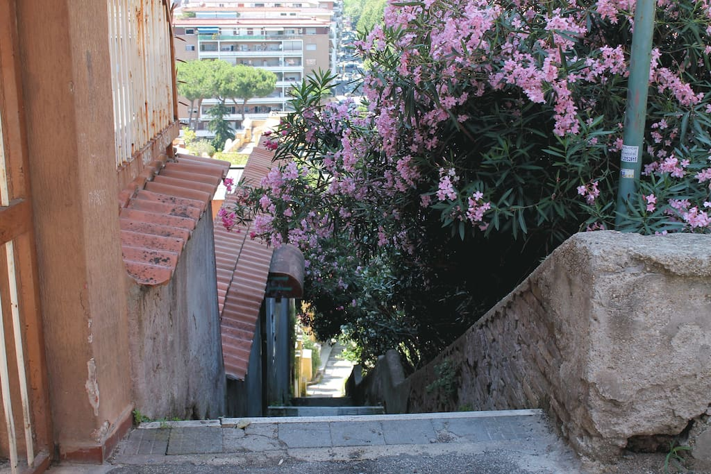 Characteristic downhill street of the Vatican Area