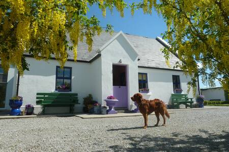 4* Country Home-Farm-on-the-Lake - Tulla - B&B