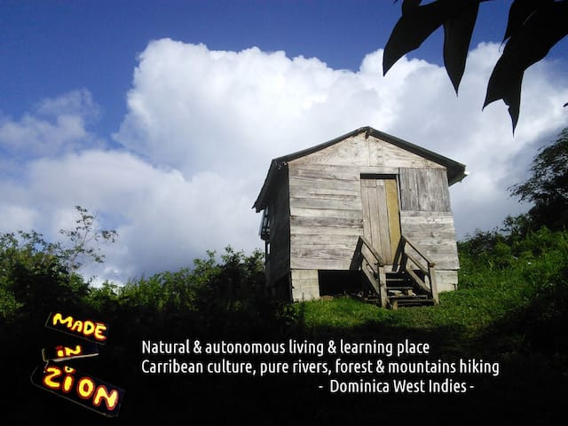 4WD & Guide - Visit Nature Dominica - Made In Zion - La Plaine - Allotjament sostenible a la natura