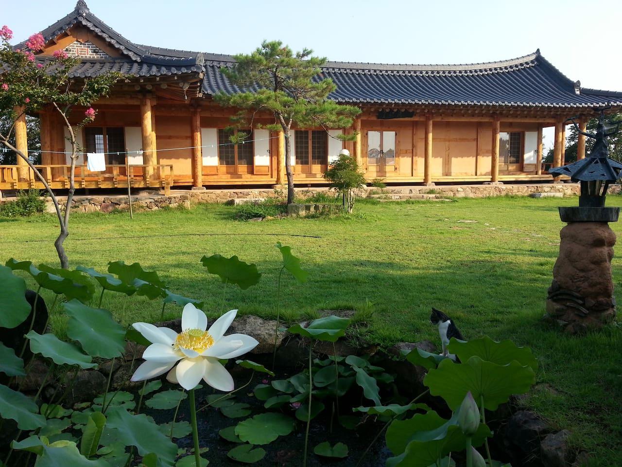 전통한옥과 한국식 정원이 어우러진 모습