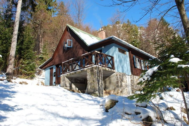 Stylish cottage in the mountains - Ruzomberok - Xalet