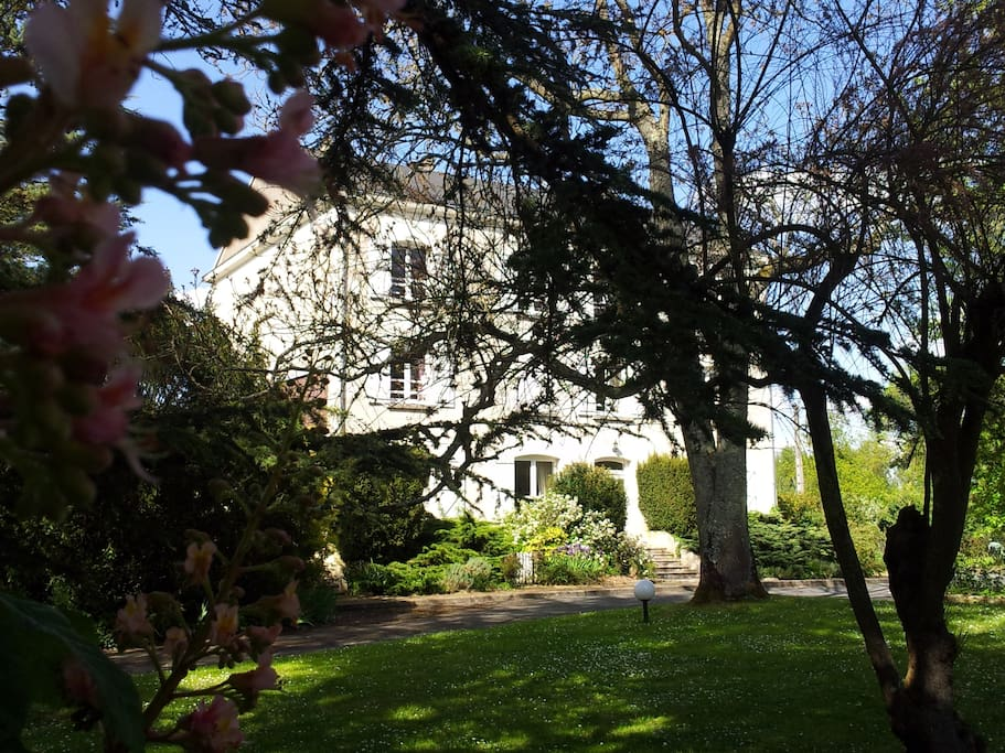 Chambre d 39 hote en touraine bed breakfasts for rent in for Chambre d hotes en touraine