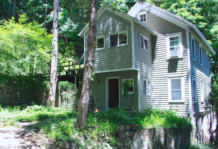 Little Historic House in Rosendale - Rosendale - Casa