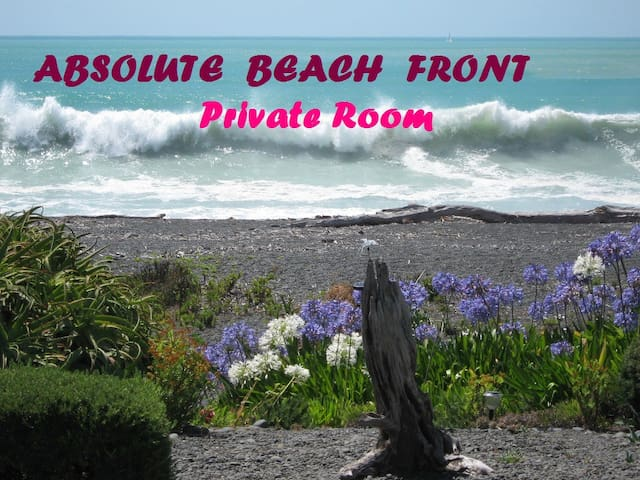 Absolute Beach Front Private Room - Napier - บ้าน