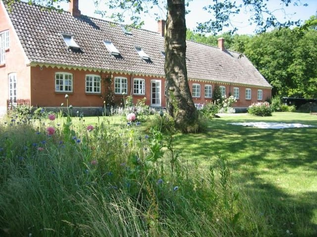 Guesthouse with a quiet atmosphere - Samsø - Bed & Breakfast