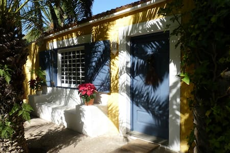 Nice small village in North of Gran Canaria - Los Dragos, Moya, Gran Canaria - Talo