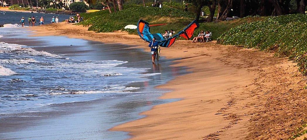 Beach Holiday 2BR 1BA - Kihei Holiday