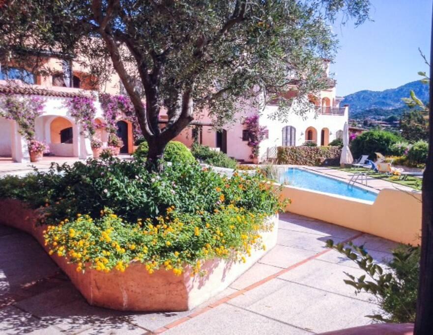 Esterno residence con piscina e giardino