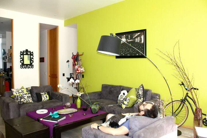 quiet and beautiful apartment  - 墨西哥城