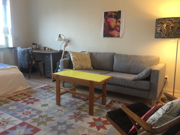Wonderful apartment close to Nytorget