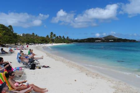 Suite Sapphire in Virgin Islands  - イーストエンド