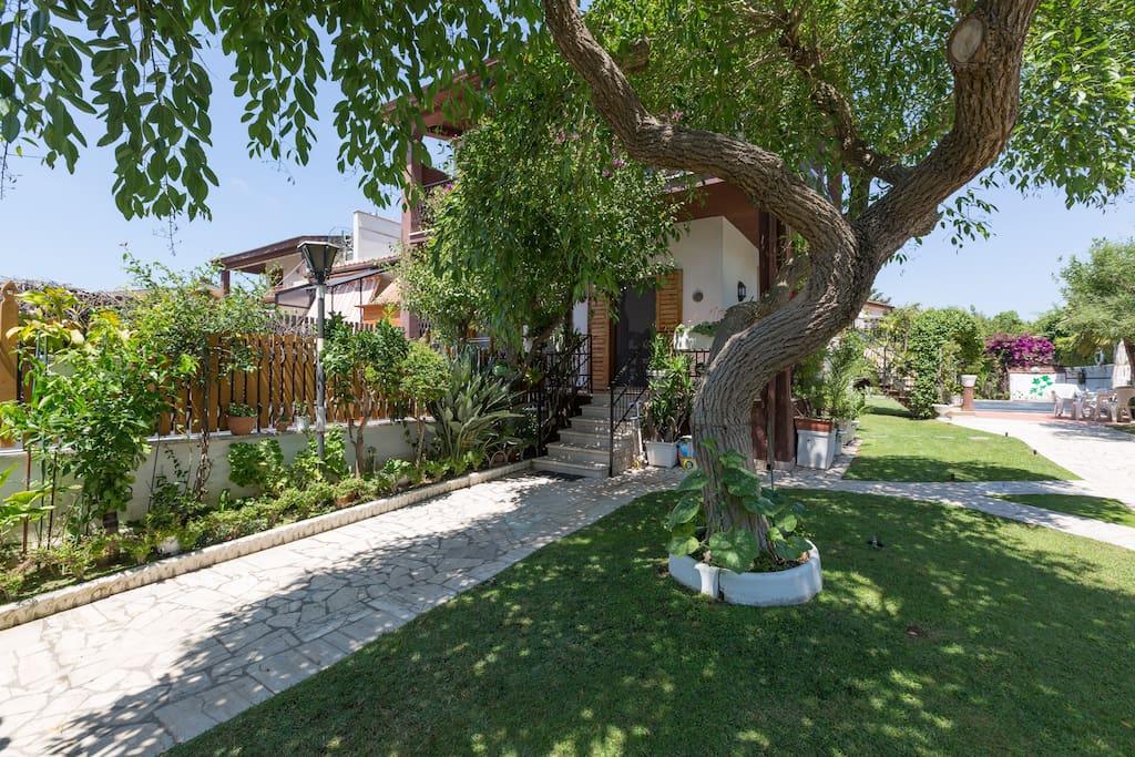 Villa Con Piscina Vicino Al Mare Ville In Affitto A Lido