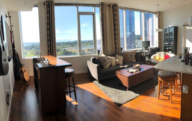 Luxury Bright Downtown Bellevue Penthouse