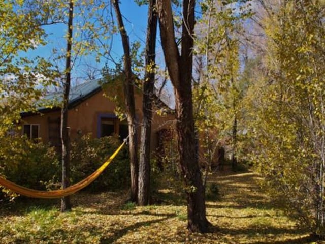 Secluded Artist's Retreat on 40 acre farm, 4-5