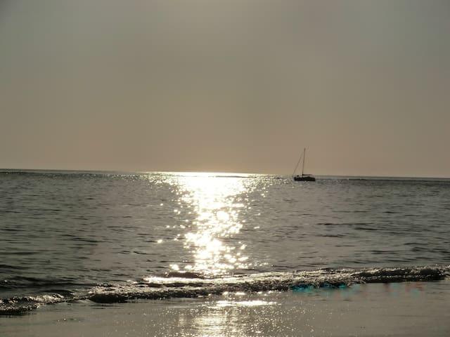Beach Bums Paradise - Edisto Beach - Edisto Island - Hus