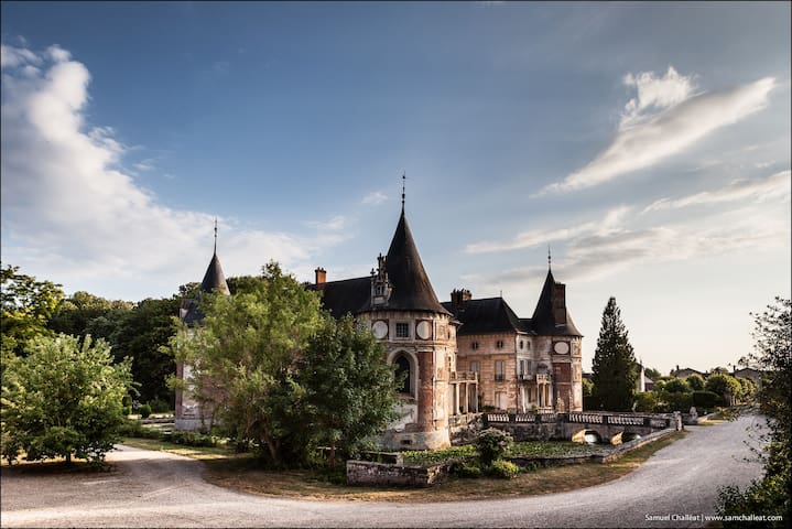 "Chateau Longecourt ""Charles IX"" - Longecourt-en-Plaine - Bed & Breakfast"