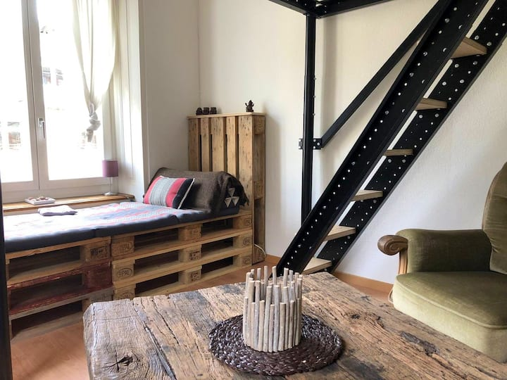 Cosy Studio; close to ETH/UZH  10 min Walk-Center