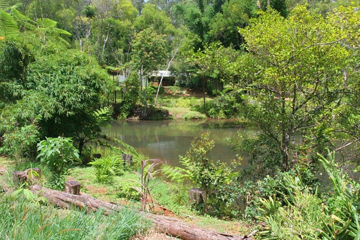 The Pond Cottage B&B - Ravenshoe