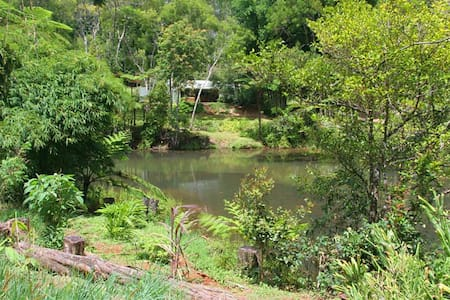 The Pond Cottage B&B - Ravenshoe
