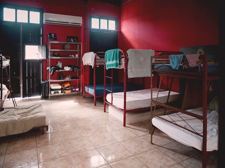 BASE hostel Old San Juan (Bed 3)