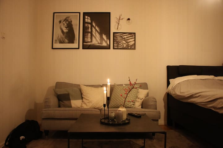 Cozy studio apartment