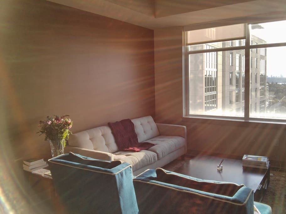 Beautiful One Bedroom In Bellevue Apartments For Rent In Bellevue Washington United States