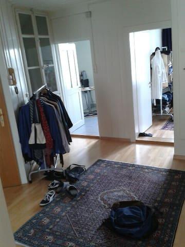3 Zi-Wohnung _ ruhige zentrale Lage - Bern - Appartement
