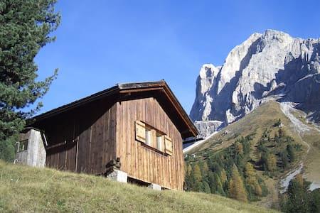 Beautiful wooden hut in the Dolomites - Bressanone - Hütte