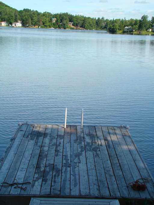 Swim off the dock.