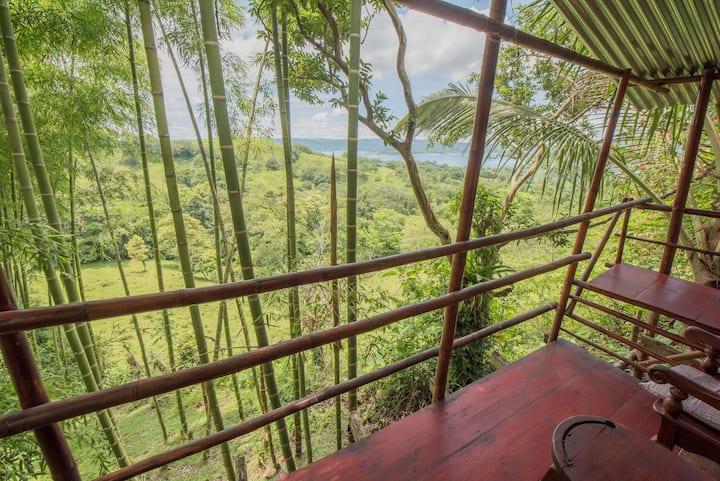 Jungle Terrace Tent