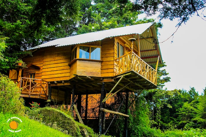 Tree House with amazing view! - Los Naranjos - Dom