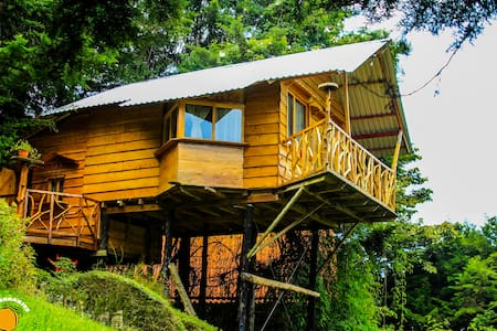 Tree House with amazing view! - Los Naranjos