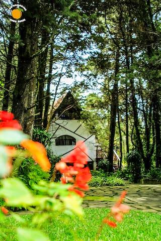 Fantastic European Style Cottage  - Los Naranjos - Haus
