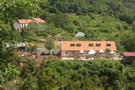 La Olga - Pavareto - Huis