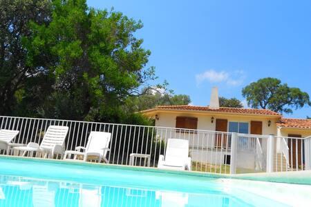 Villa avec piscine proche plages - Sotta