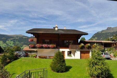 2-Zimmerwohnung, Bergsicht - Grindelwald
