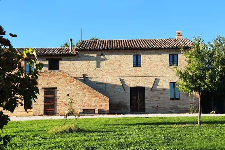 Amazing cottage surrounded by viney - Appignano - 一軒家